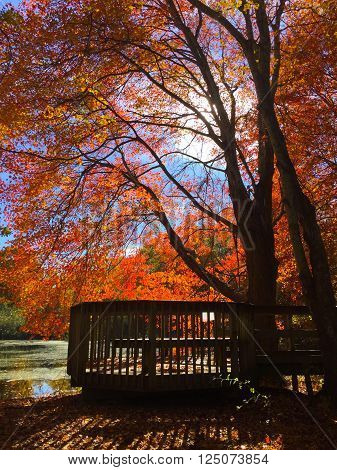 Autumn Day in the Hamptons, October 2015
