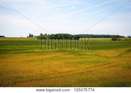View on bright landscape with country houses in Lithuanian country