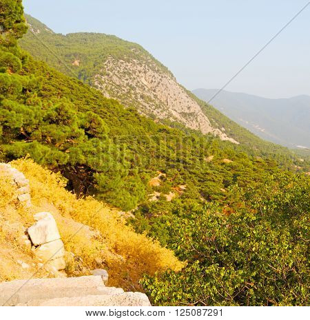 Olympos  Mountain Bush  Anatolia Heritage Ruins   From The Hill In Asia Turkey Termessos Old Archite