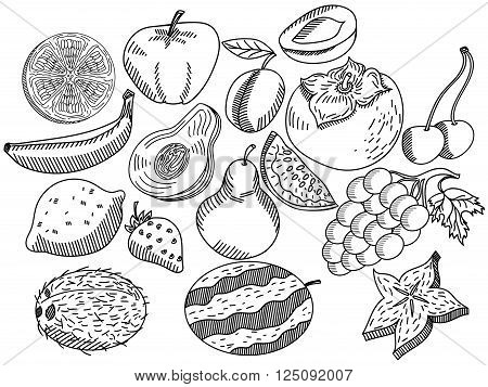 Fruits coloring book for adults vector illustration. Anti-stress coloring for adult. Zentangle style. Black and white lines. Lace pattern