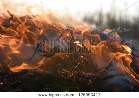 Bonfire flame with high flames close to the big smoke
