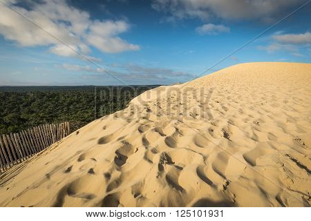 View from the highest dune in Europe - Dune of Pyla (Pilat) Arcachon Bay Aquitaine France