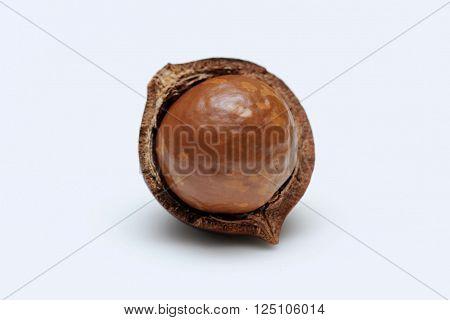 Half cracked open macadamia nuts on white background