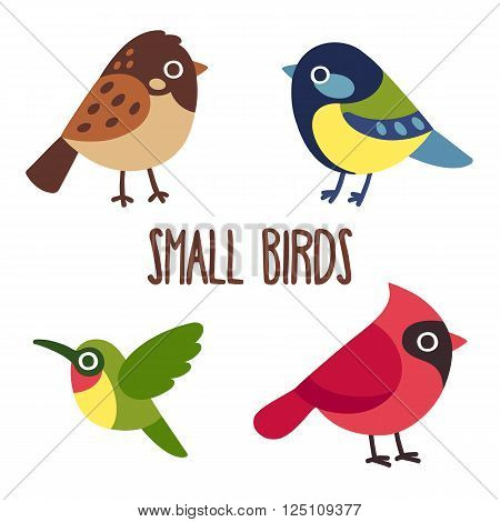 Cute cartoon wild birds set. Sparrow and blue tit colibri and red cardinal. Vector bird icons.