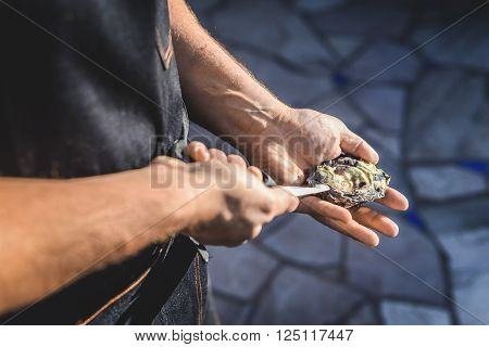 A chef breaking open a fresh oyster