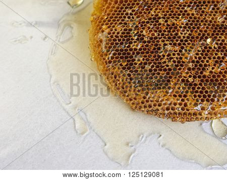 Honeycomb With Honey.