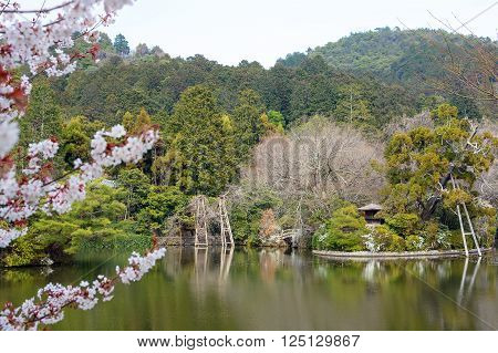 Lush pond and Zen garden landscape at Ryoan-ji in Kyoto, Japan