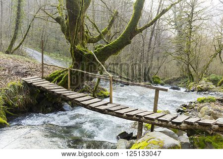 Small wooden bridge over the mountain river in the forest