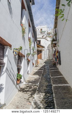 Sunny narrow street between building decorated with flowers in pots