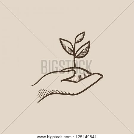 Hands holding seedling in soil sketch icon.