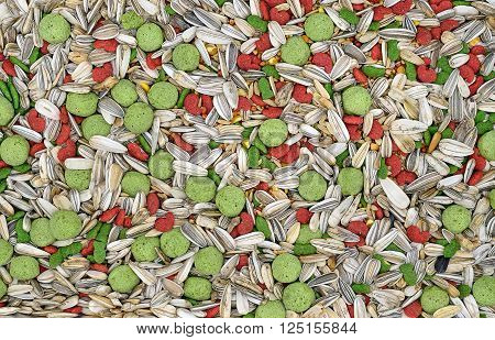 Hamster food for textured and background (pets, food, hamster)