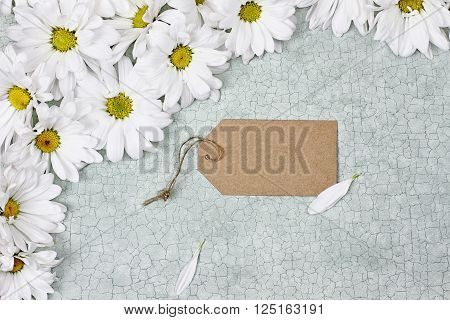 Blank card and daisies over green craquelure background with room for your text.