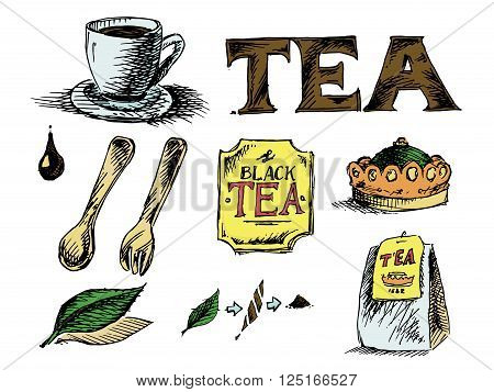 Tea Icons Set on White Background. Hand drawn colorful vector stock illustration
