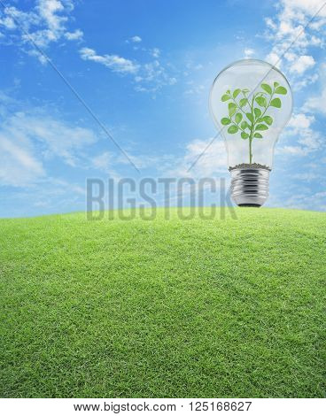 Light bulb with small plant inside and green grass field over blue sky Energy conservation and environmental concept