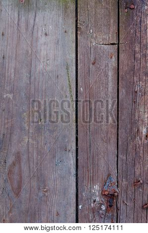 Wood texture. Background old panels. Old wooden boards