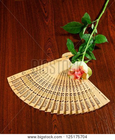 Folding carved sandalwood fan and pink-white rose on wooden dark brown background.