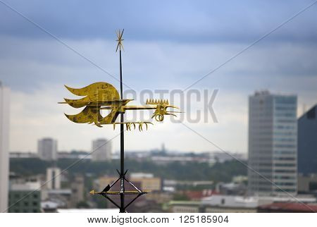 Old city Tallinn Estonia. A old weather vane rooster bird over the city