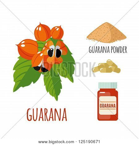 Superfood guarana set in flat style: guarana berries, powder, pills. Organic healthy food. Isolated objects on white background. Vector illustration