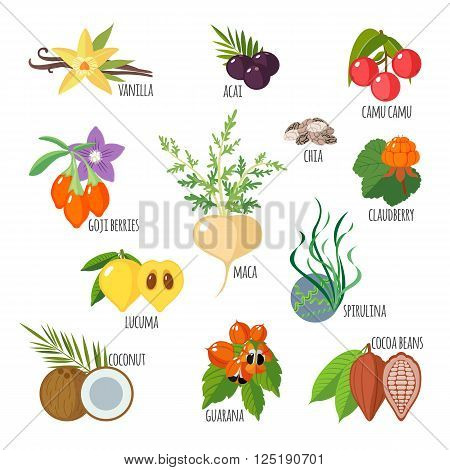 Superfoods in flat style. Healthy lifestyle. Fruits and vegetables for health. Vector illustration
