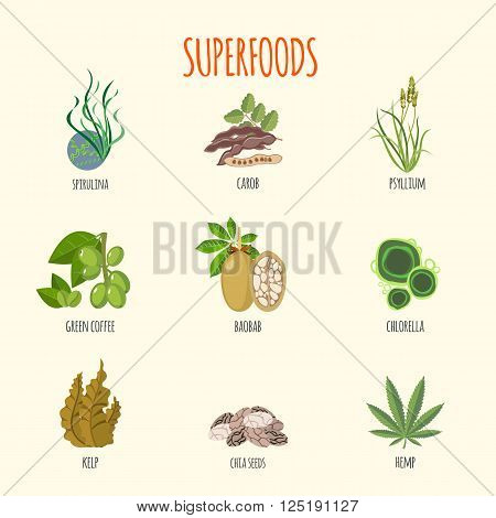 Set of superfoods in flat style. Healthy lifestyle. Fruits, vegetables, aglaes and herbs for health. Vector illustration