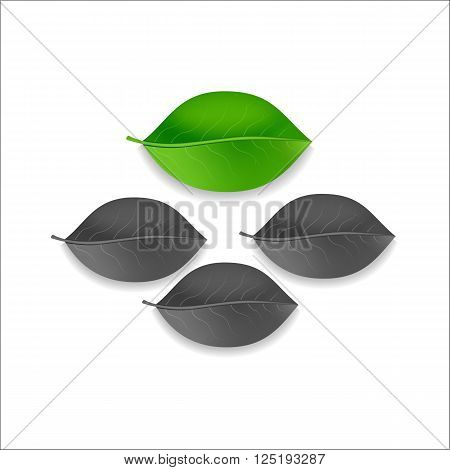 three gray and one green leaf tree on a white background