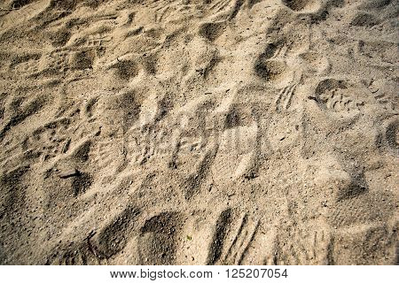 Texture of sand and footprints in the sand