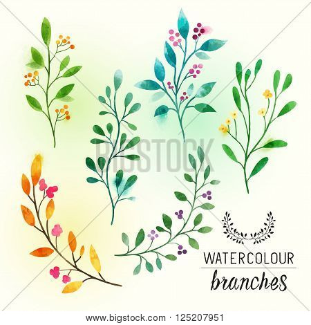 watercolour Floral Branches. Textured floral elements with pink berries. Vector illustration.