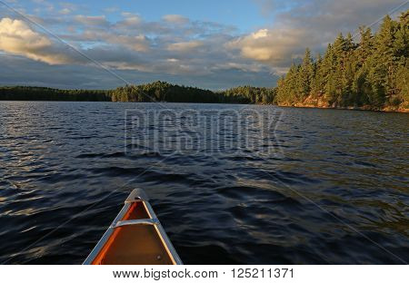 The view from a canoe gliding on a lake in Algonquin Provincial Park in Ontario Canada.