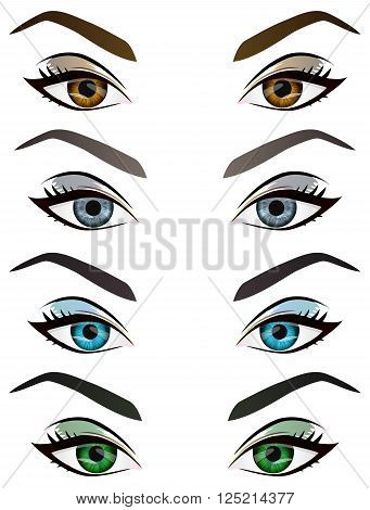 Set of realistic cartoon vector female eyes and eyebrows with different color and make up. Brown blue green grey woman eyes and brows design element body parts isolated on white background