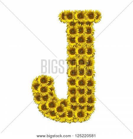 Sunflower alphabet isolated on white background, letter J