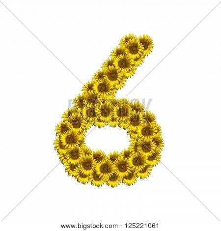 Sunflower number isolated on white background, number 6