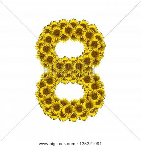 Sunflower number isolated on white background, number 8