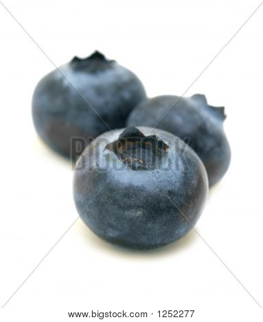 Blueberries Trio