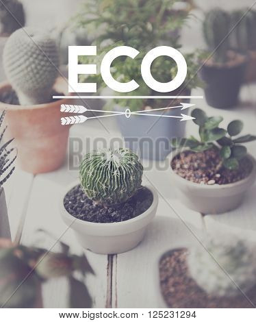 Eco Ecology Environmentally Friendly Hobby Concept