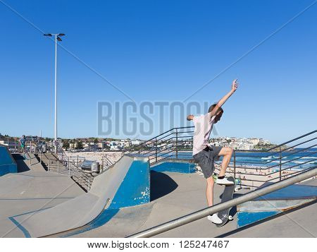 Sydney - March 1 2016: skate boarder performs tricks in Sate Park with interesting slides in the beautiful city beach and people sunbathing by the sea March 1 2016 Sydney Australia