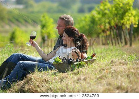 Couple drinking wine in vineyard