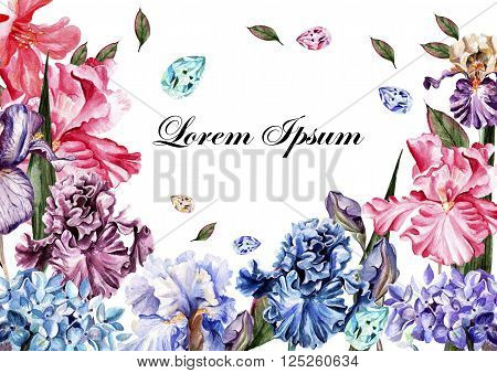Beautiful watercolor card with rose flowers and iris flower. Butterflies and plants.    Illustration
