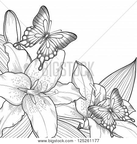 beautiful background for greeting card with monochrome black and white lilies and butterflies. Hand-drawn contour lines and strokes