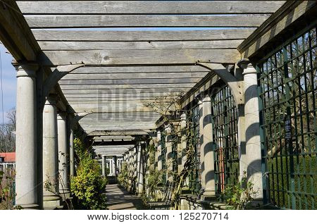 Pathway underneath very large wooden pergola in uk