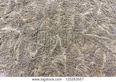 Sand pellets made by sand bubble crabs blankets a beach at low tide tropical. Flat Lay