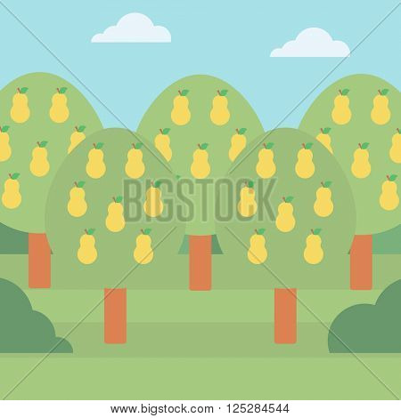 Background of pear trees.
