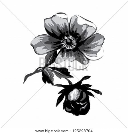 Branch with flowers roses isolated. Vintage grunge background. Grayscale vector illustration.