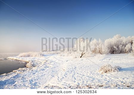 Snowcovered trees with hoarfrost at the river bank. Winter landscape.