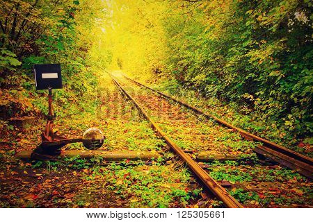 beautiful rail sliding rail to rail autumn