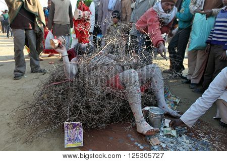 ALLAHABAD, UTTAR PRADESH, INDIA - FEBRUARY 09, 2013:sadhu (holy man) pilgrim is practicing self-torture in the spiky twigs nest at Maha Kumbh Mela festival gathered for joint praying.