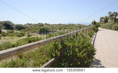 Promenade beach along the sand dune at the Mediterranean sea in Marbella Andalusia Spain