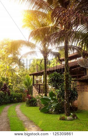 Brazil traditional house. path along the house and palm trees in the garden Brasil