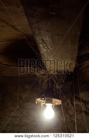 Light bulbs in old barn. Web under ceiling
