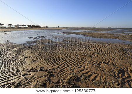 Low tide seascape with naked bottom and a beach on the shore