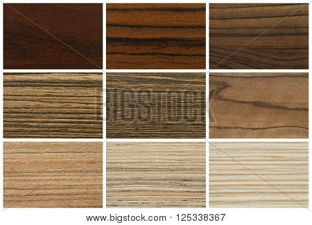 Chipboards, color palette and texture for furniture